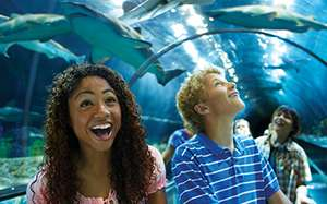 Seaworld Orlando - 60% off and free meal til end of Jan (weekdays) £35.75