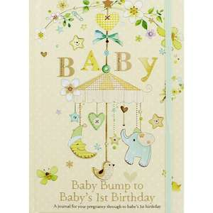 Baby Bump To 1st Birthday Journal £3.20 with code @ The Works (Free Click and Collect)