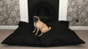 XL dog bed with removable cover £15.97 delivered @ Groupon