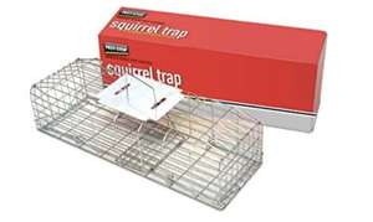 Pest-stop Squirrel Cage Trap - £14.34 (Prime) £18.83 (Non Prime) @ Amazon