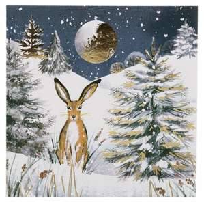 Half price Christmas cards and wrapping paper plus £5 off £30/£10 off £50 spend with code. Free C/C @ WH Smith