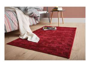 Lidl - Meradiso Rug - various colours - 80 x 130cm £11.99