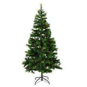 6ft Luxury Cone and Berry pine Christmas Tree £12.50 at Tesco Ayrshire