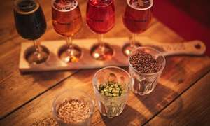 Self-Guided Beer School with Tasting and Meal at Brewdog (various locations) for £10.99 @ Groupon