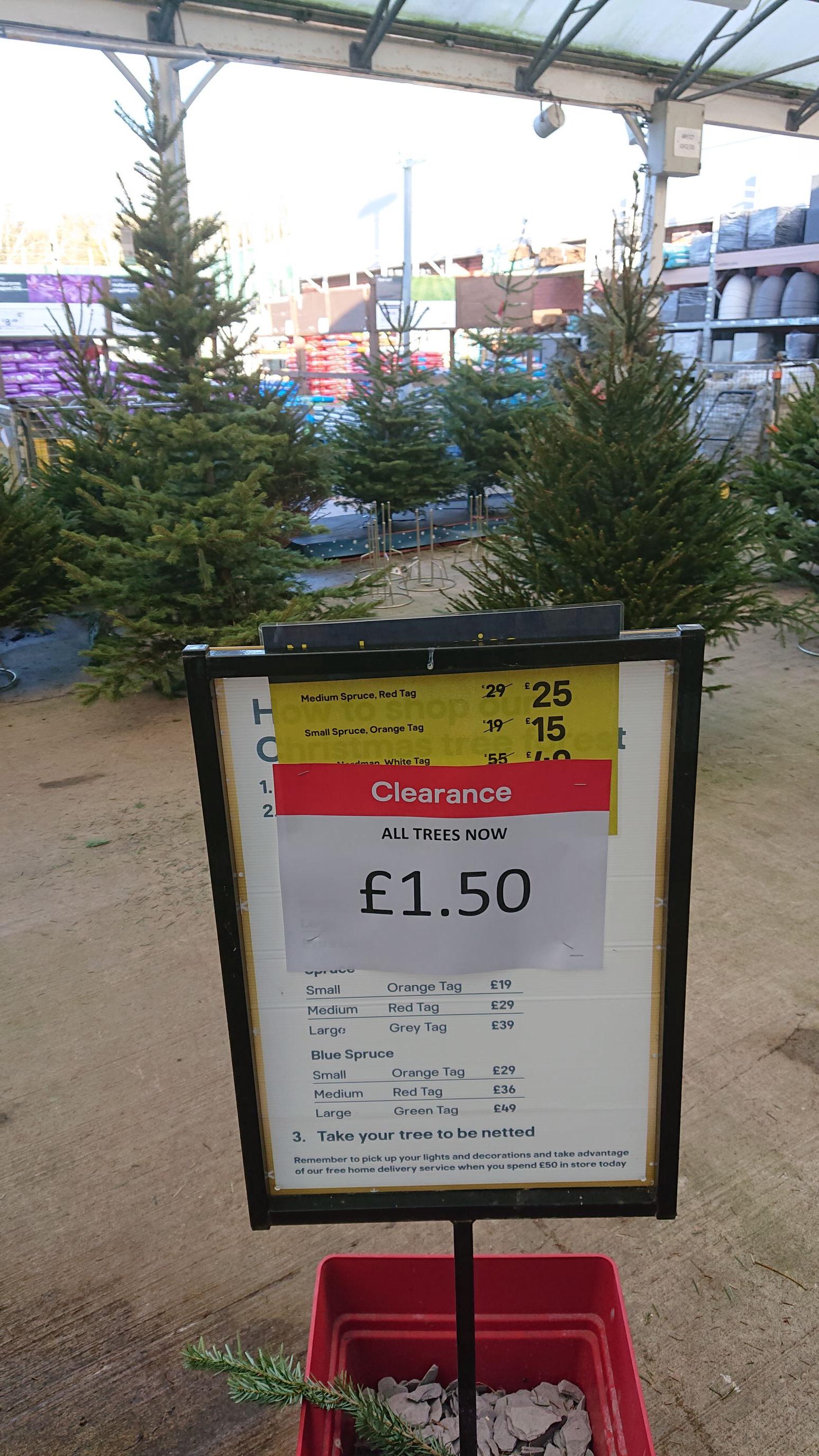 Any Christmas tree £1.50 @ B&Q Bristol longwell green