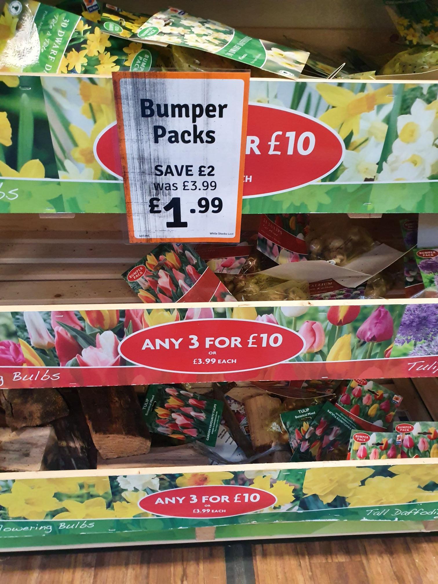 Bulbs for next year now half price tulips daffodils - £1.99 @ The Range (Hartlepool)