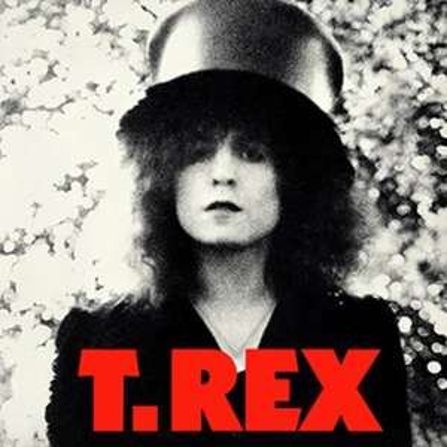 Marc Bolan & T Rex - T.Rex/The slider [VINYL] 40th Anniversary Edition 180 gram, Remastered now £12.99 (Prime) + £2.99 (non Prime) at Amazon
