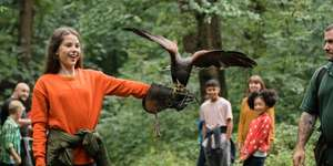 2 hour birds of prey handling experience nr Burton upon Trent now £15 or £29 for two at Travel Zoo