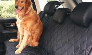 Car Pet seat protector £3.88 delivered at Groupon