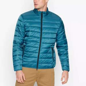 Red Herring Padded jackets, starting at £12 from Debenhams (Free delivery with code)