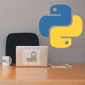 Mastery in Python - now Free with code @ Udemy