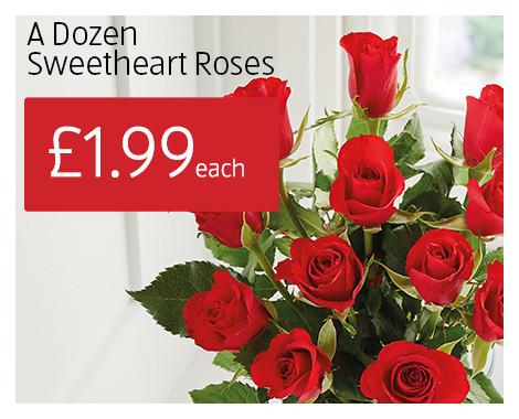 A Dozen Sweetheart Roses £1.99 @ Aldi