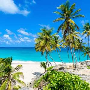 Feb Direct Return Flights from London Stansted to Barbados £199 @ TUI