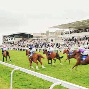 Watch free Horse Racing on the 30th March (free grandstand entry) @ Bath Racecourse