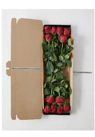 Valentines red roses £20 @ Marks & Spencer