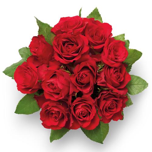 £4 for Dozen Sweetheart Roses @ Lidl instore