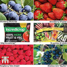 Grow Your Own Bumper Pack £15 - includes fruit plants, bushes and seeds (£4.95 delivery)