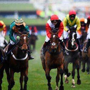 Money Back As Cash If You Lose (Up to £10) on Supreme Novices Hurdle Cheltenham 10 March 13:30 @ SkyBet