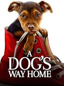 A Dog's Way Home (4K UHD) £3.99 to own @ Amazon Prime Video