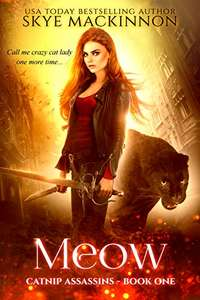 Meow (Catnip Assassins Book 1) Kindle Edition 99p at Amazon Kindle