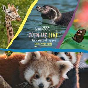 LIVE: A virtual zoo day at Chester Zoo - Friday, 27 March 2020 from 10:00-16:30 (Via Facebook)