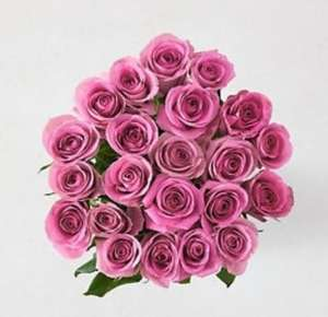 Fairtrade® Pink Rose Bouquet £25 at Marks & Spencer