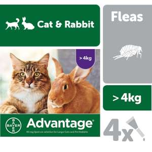 3 for 2 - Advantage Flea Treatment for Cats, Dogs and Rabbits 4 Pipettes - £21.89 delivered at VetUK