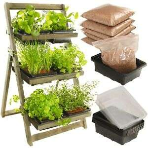 Kitchen Garden Herb Planter Wood 3 Tier