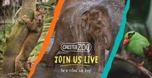 Chester Zoo Live Virtual Tour 24/04/2020