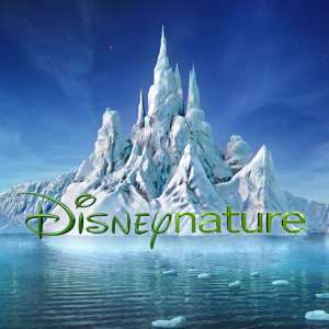 Free Disney Nature Activity Packs