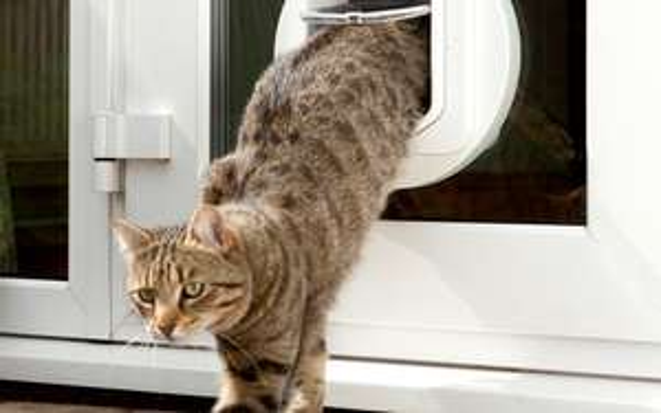 SureFlap Microchip Cat Flap £79.26 @ Waitrose & Partners Pet Store