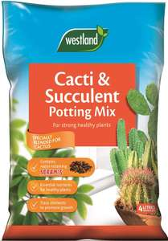 Westland Cacti/Succulent Potting Compost 4L - £3.99 (Prime) £8.48 (Non Prime) @ Amazon