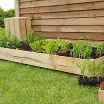 Standard Raised Bed 184 x 93cm - £32.90 delivered @ DT Brownseeds