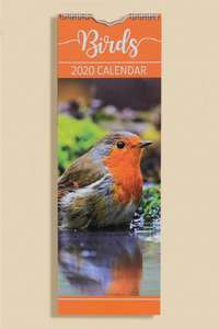Studio Clearance e.g. Small Slim Birds 2020 Calendar - 10p + £4.99 delivery / free for new credit members