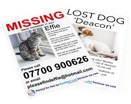 Free 50 x A4 prints inc delivery - Missing pet posters at doxdirect