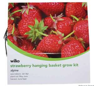 Wilko Tomato / Strawberry Hanging Basket Kits £1 instore Worthing