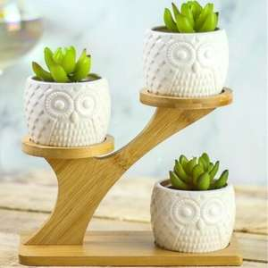 3 Ceramic Owl Plant Pots with 3 tier bamboo stand £10.94 delivered @ Roov