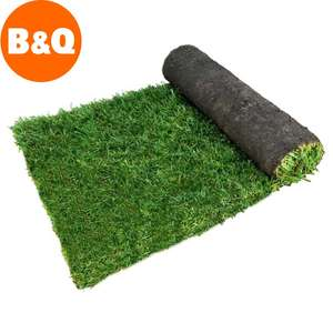 Lawn Turf Each roll covers 1.5 yard reduced to clear for 50p at B&Q Harlow