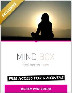 Free access to Mindbox for 6 months with totum pro