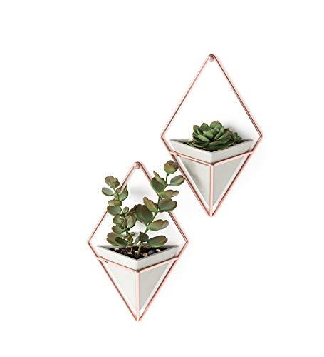 Umbra Trigg Hanging Planter Vase & Geometric Wall Decor Container £14.25 @ Amazon (+34.49 non-prime)