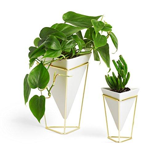 Umbra Trigg Desktop Planter Vase & Geometric Container £26.60 @ Amazon