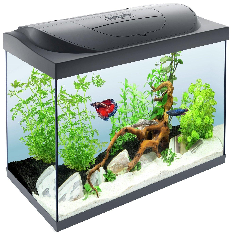 Tetra 80 Litre Starter Line aquarium £84.99 free click and collect at Argos