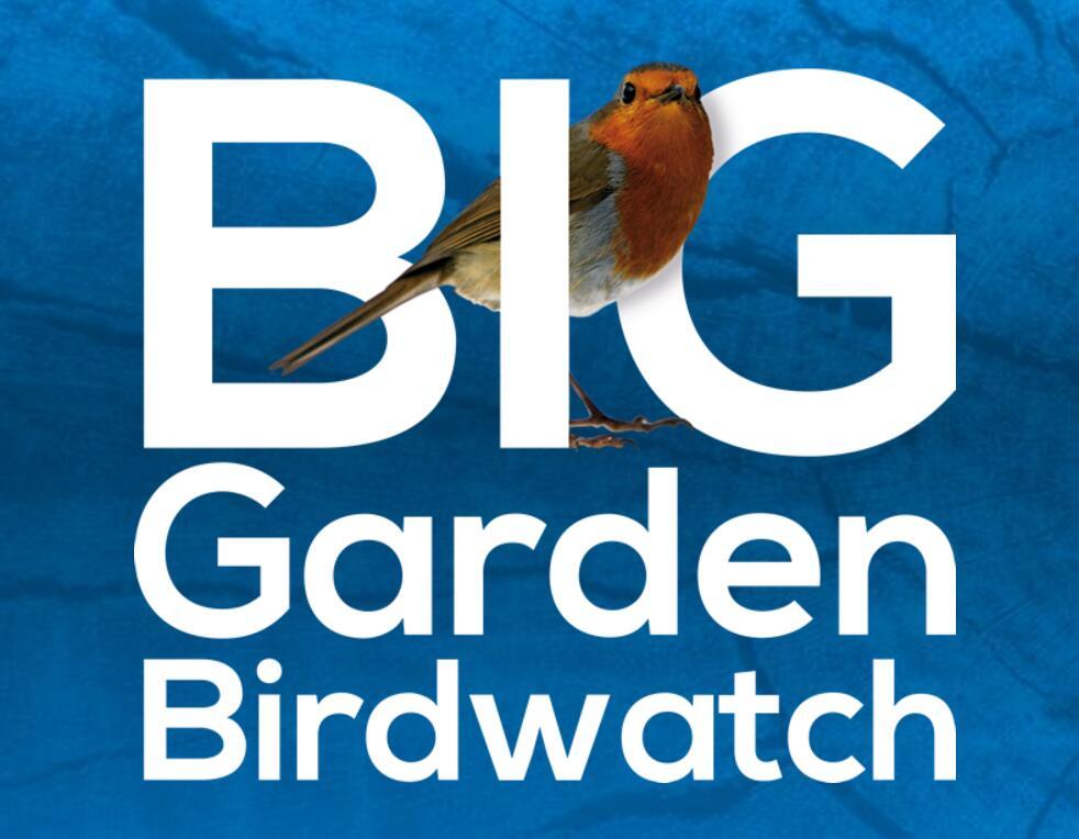 Free Bird Watching Pack at RSPB