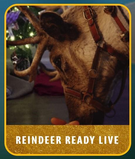 McDonald's Reindeer ready VR