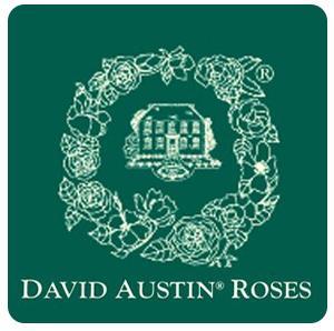 10% off any order @ David Austin Roses