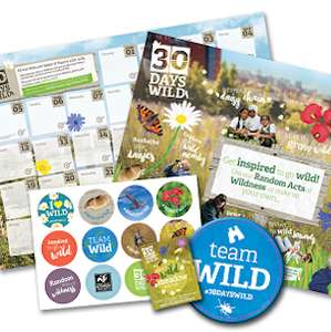 Free Wildlife Activity Pack for participating in Litter Picking etc for Random Acts of Wildness at The Wildlife Trust