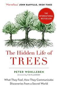 The Hidden Life of Trees (The International Bestseller) Kindle Edition by Peter Wohlleben for 99p @ Amazon