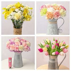 25% Off All Flowers & Plants (eg: Carnations £12 / Flowers & Chocolate Gift £16.25 / Pink Blush £17.25 etc) - Free Delivery @ Bunches