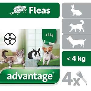 Advantage small cats flea treatment x 4 - £9.99 / £12.99 delivered @ Superdrug