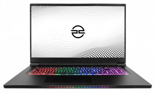 "17.3"" Ionico® 91 watt GTX 3070 Gaming laptop Core i7 10875H, 128GB SSD, 16GB RAM £1484 @ PC Specialist"
